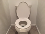 toilet-triggerlinc